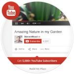 Buy 5,000 YouTube Subscribers